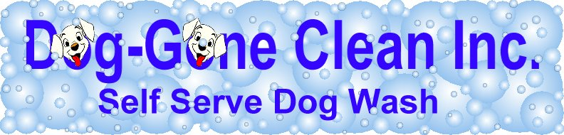 Dog gone clean inc self serve dog wash hamilton ontario home solutioingenieria Gallery
